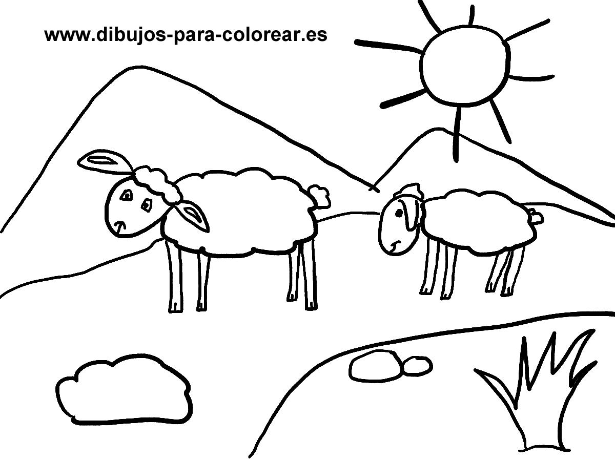 Dibujos para colorear - Ovejas en el campo