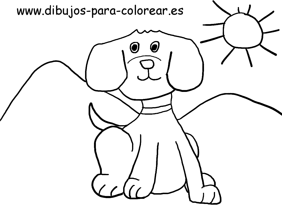 Dibujos para colorear - perro cachorro
